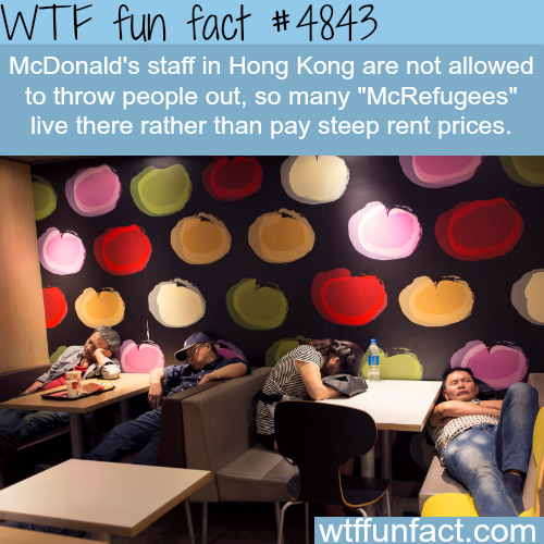 McRefugees in Hong Kong - WTF fun facts