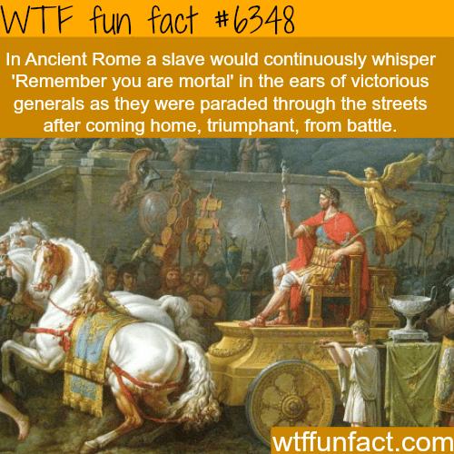 Memento mori  - WTF fun facts