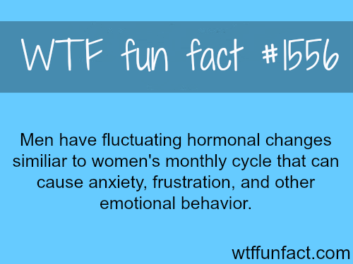 Men's Monthly cycle?WTF fun facts