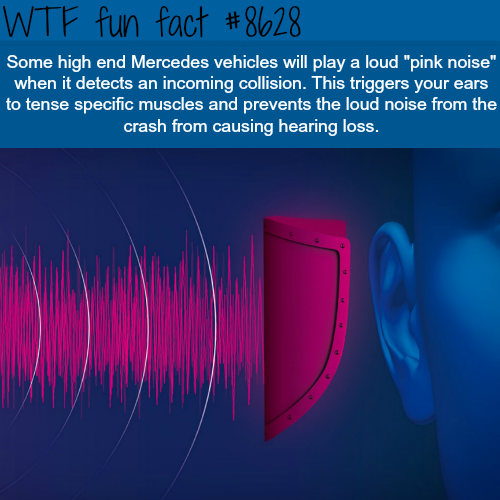 Mercedes ear protection technology - WTF fun facts