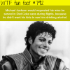 michael jacksons facts wtf fun facts