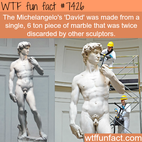 Michelangelo's 'David' - FACTS