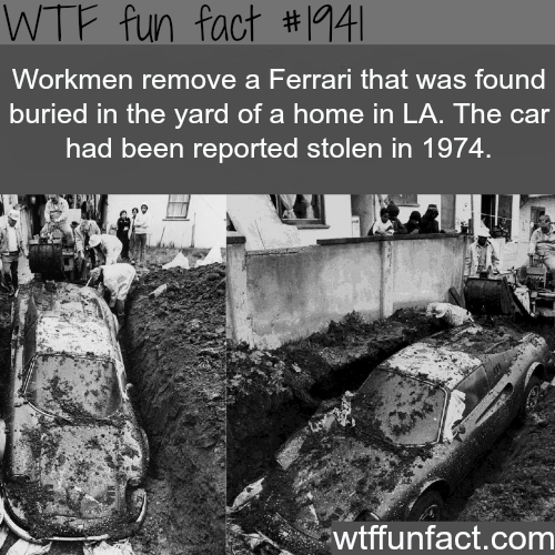 Missing Ferrari from the 1974 -WTF fun facts