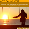 missing someone wtf fun facts