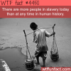 modern day slavery wtf fun facts