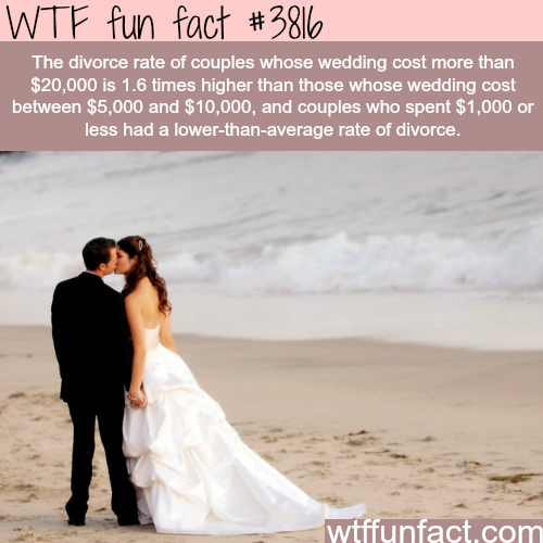 Money does not equal better marriage - WTF fun facts