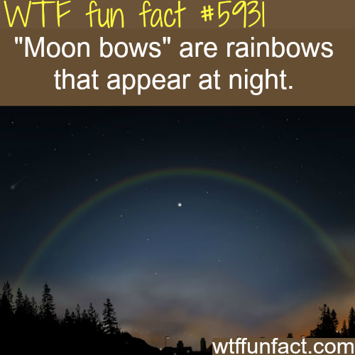 Moon bows- WTF fun facts