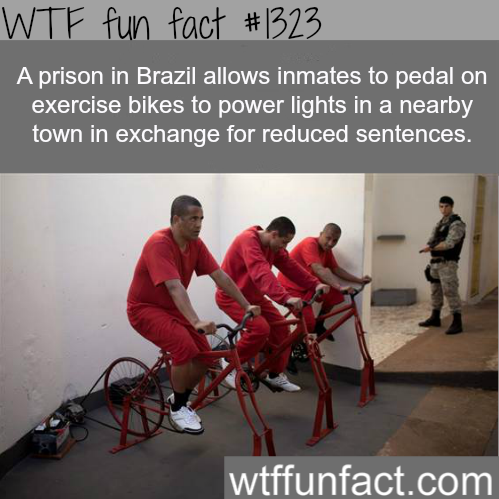 MORE OF WTF FACTS are coming HERE