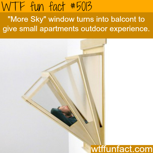 More Sky window - WTF fun facts