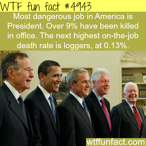 Most dangerous job in America - WTF fun facts
