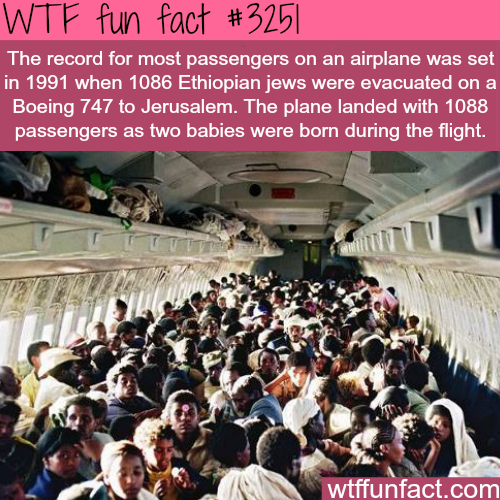 Most passengers on an airplane -  WTF fun facts