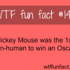 movies facts