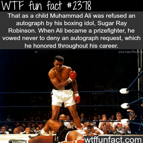 Muhammad Ali and Sugar Ray Robinson - WTF fun facts