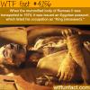 mummified body of ramses ll
