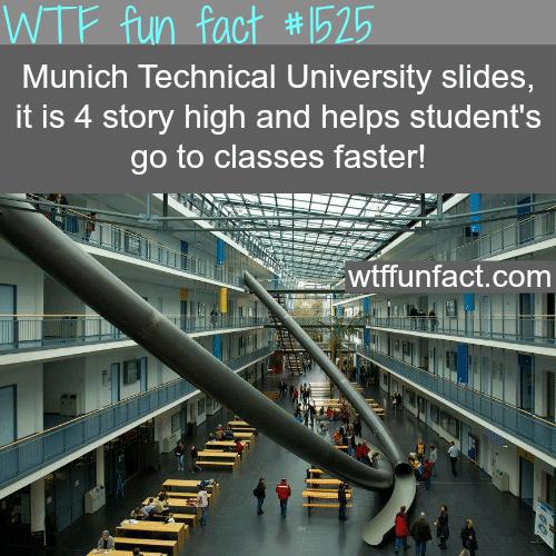 Munich Technical University slides -wtf fun facts