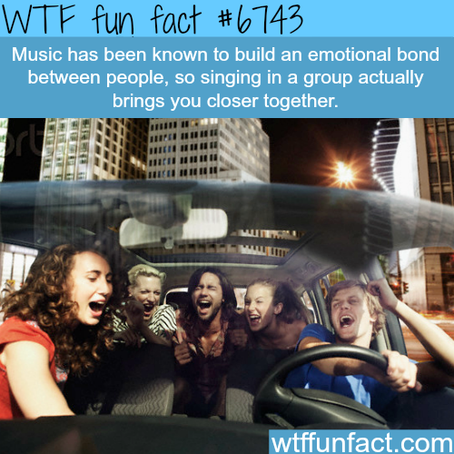 Music brings people together - WTF fun fact