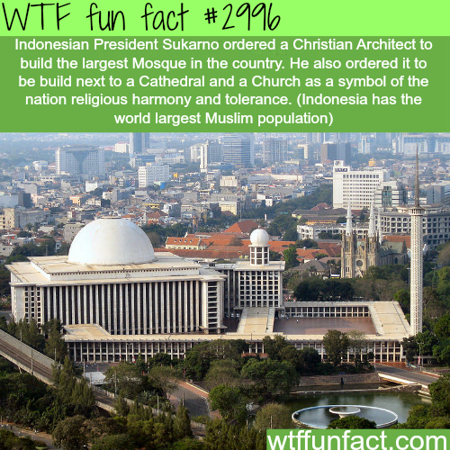 Muslims and Christians in Indonesia -  WTF fun facts
