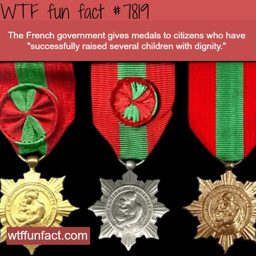Médaille de la Famille française - WTF fun facts