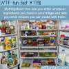 myfridgefood wtf fun facts