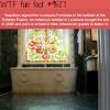 napoleon wtf fun fact