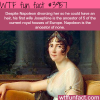 napoleons first wife wtf fun facts