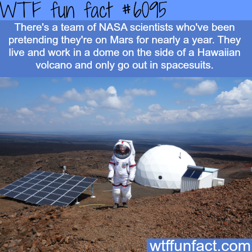 NASA team pretending that they are living on Mars - WTF fun facts