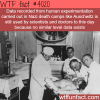 nazi experimentation on humans wtf fun facts