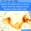 nearly 40 million tons of dust is blown from the