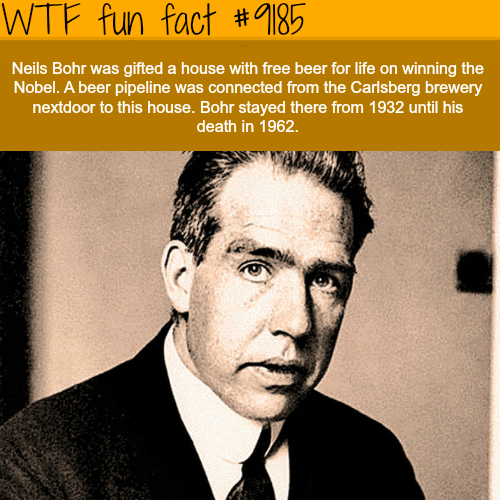 Neil Bohr - WTF Fun Facts