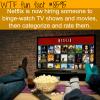 netflix hiring people to binge watch tv shows