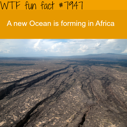 New Ocean forming in Africa - WTF fun facts