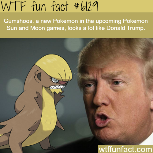 New Pokemon that looks like Donald Trump  - WTF fun facts
