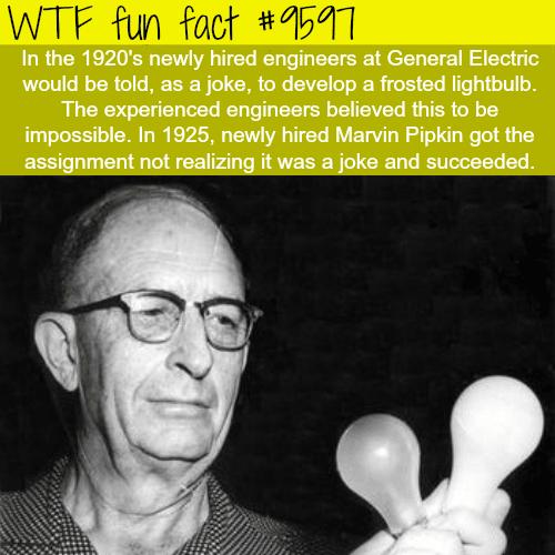 New Talent - WTF fun fact