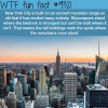 new york city wtf fun facts