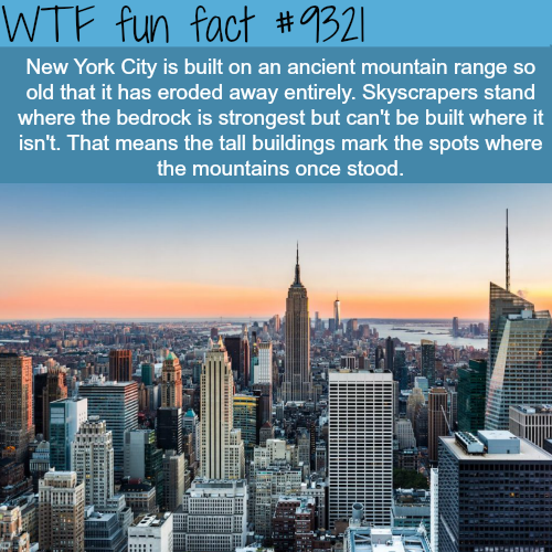 New York City - WTF fun facts