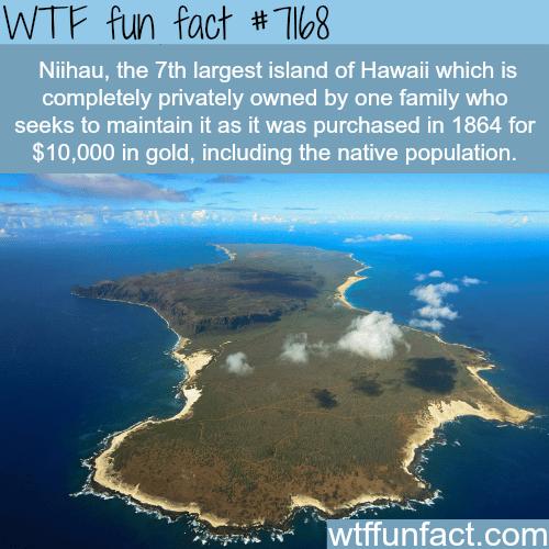 Niihau - WTF Fun Fact