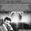 nikola tesla death beam wtf fun facts