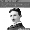 nikola tesla wtf fun facts