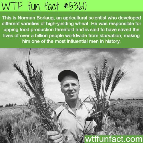 Norman Borlaug facts - WTF fun facts
