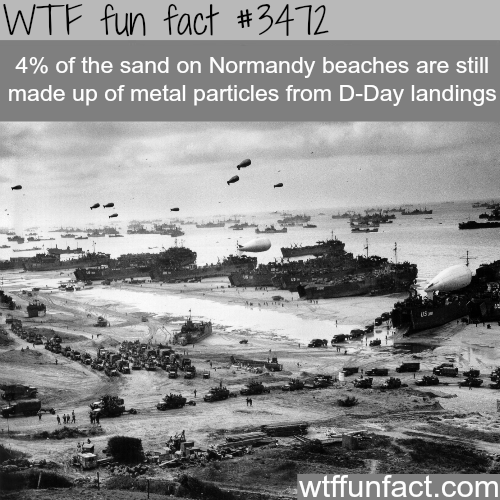 Normandy's beach is 4% metal -  WTF fun facts