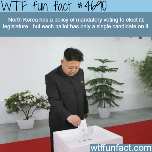 North Korea elections - WTF fun facts