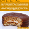 north korea is obsessed with choco pies wtf fun