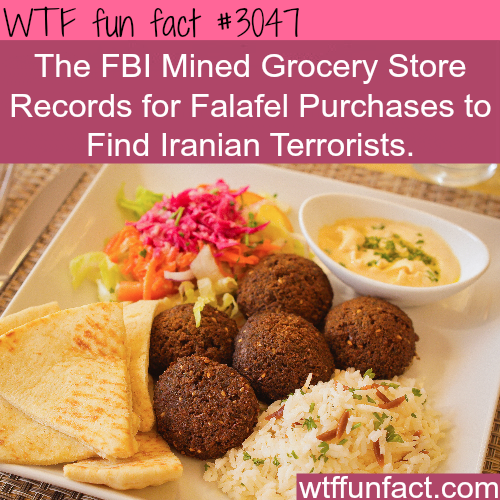 Are you kidding? Falafel is associated with terrorists -  WTF fun facts