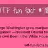 obama brews beer