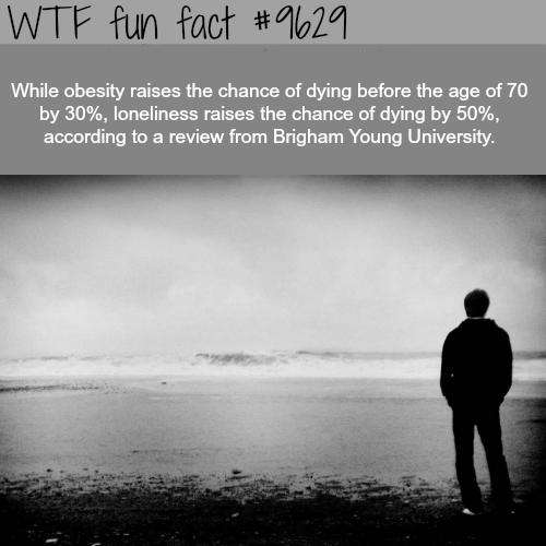 Obesity vs loneliness - WTF fun fact
