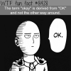 ok wtf fun facts