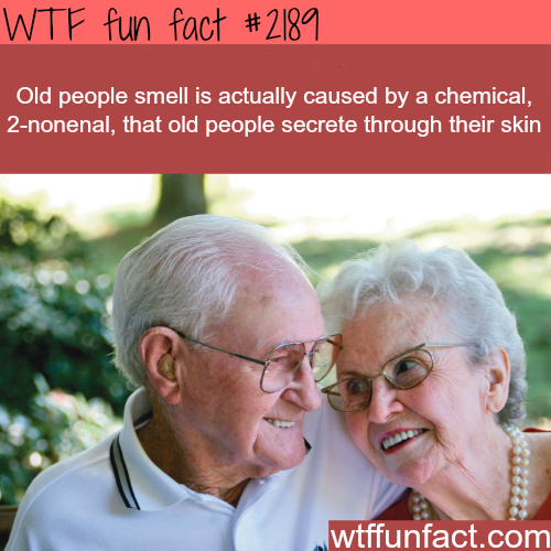 Old people smell (2-nonenal) -WTF fun facts