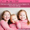 older siblings have higher iq wtf fun facts