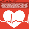 one billion heartbeats wtf fun fact
