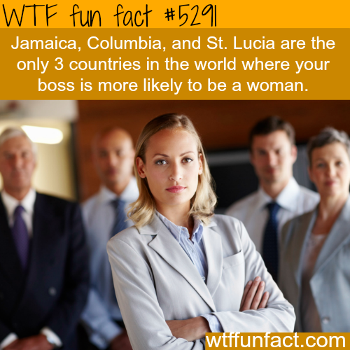 Only three countries have more women bosses than men - WTF fun facts